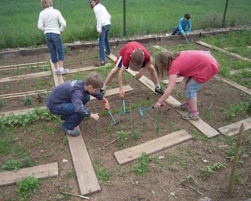 school-garden-1737320_640